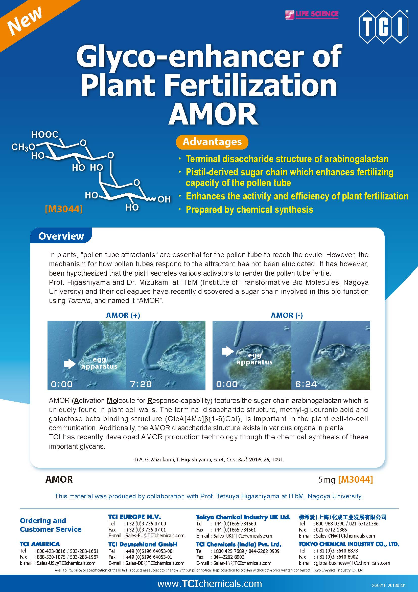 http://www.itbm.nagoya-u.ac.jp/en/news/Glyco-enhancer%20of%20Plant%20Fertilization%20AMOR%280301%29.jpg