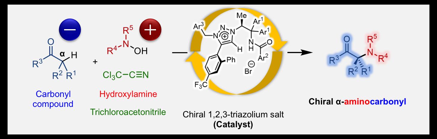 Aminocarbonyl_Figure1.png