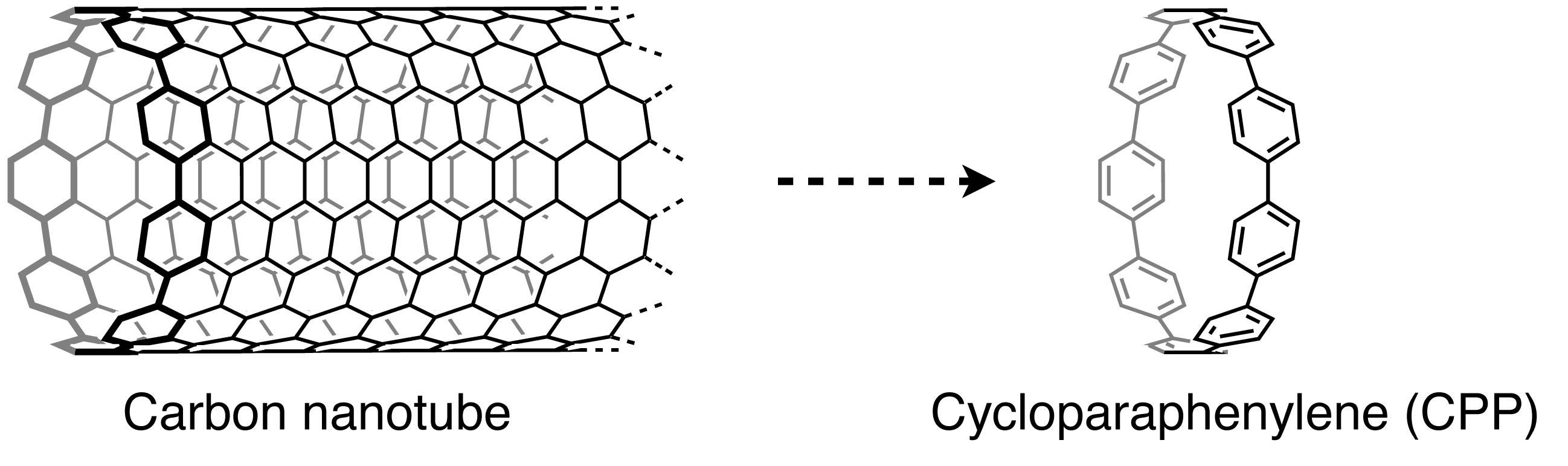 CPPCr_Figure2.jpg
