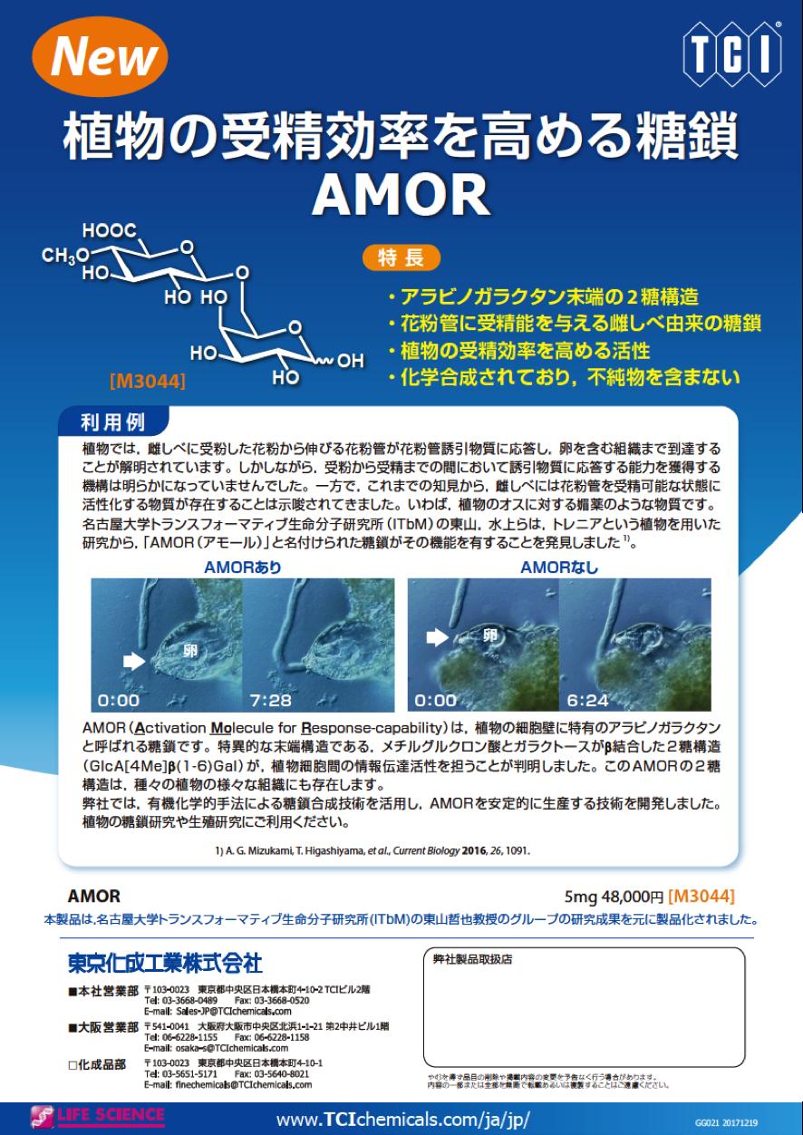 http://www.itbm.nagoya-u.ac.jp/ja/news/AMOR_TCI.png
