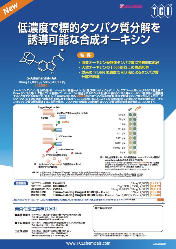 Brochure-LL081-J.png