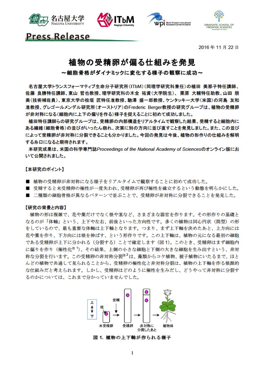 http://www.itbm.nagoya-u.ac.jp/ja/research/20161122_Ueda_PNAS_JP_PressRelease_ITbM.png