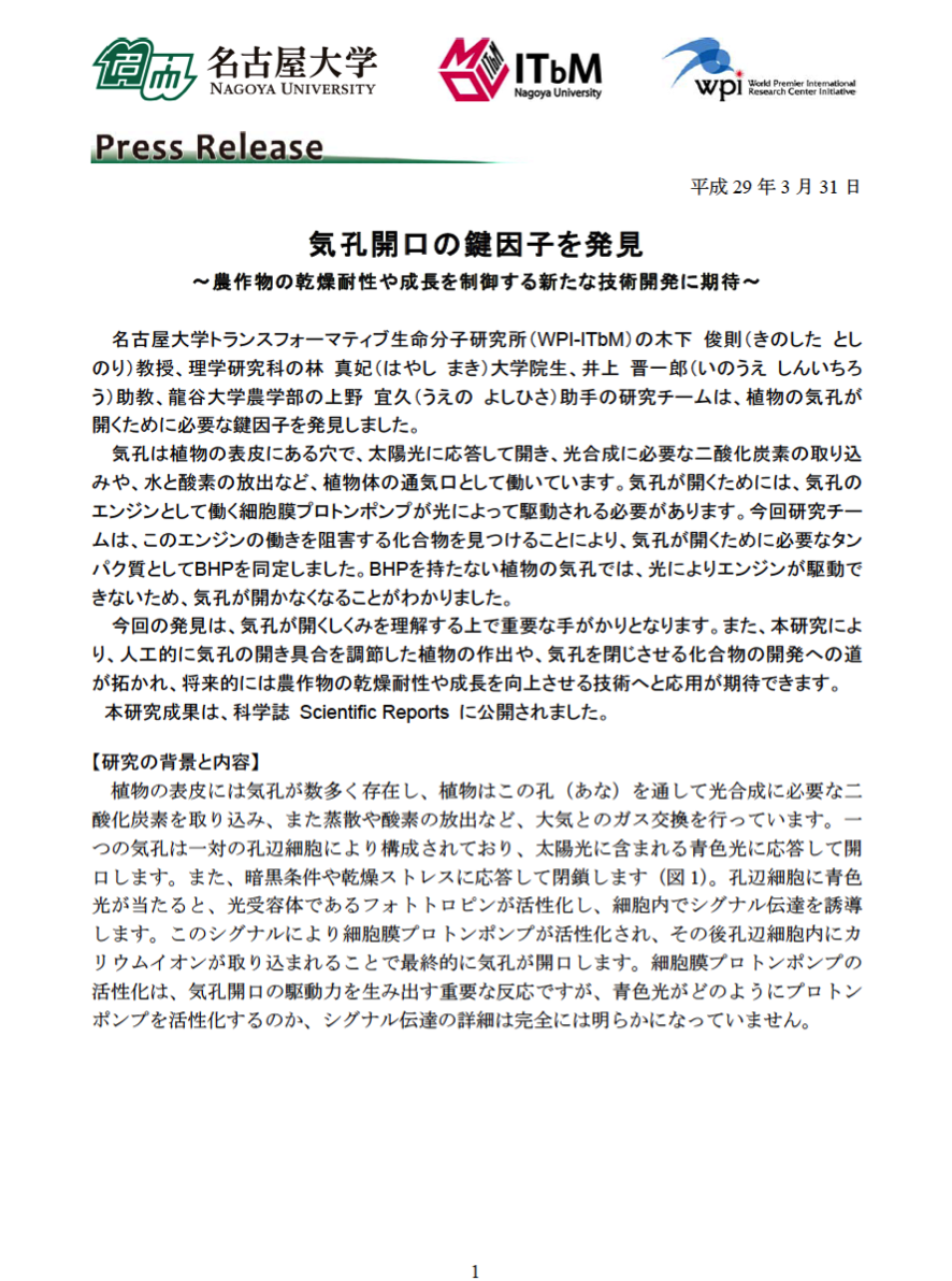 http://www.itbm.nagoya-u.ac.jp/ja/research/20170331_SciRep_JP_PressRelease_ITbM.png