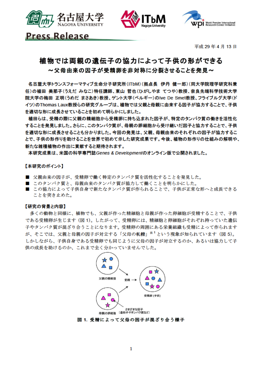 http://www.itbm.nagoya-u.ac.jp/ja/research/20170413_GandD_Parents_JP_PressRelease_ITbM.png