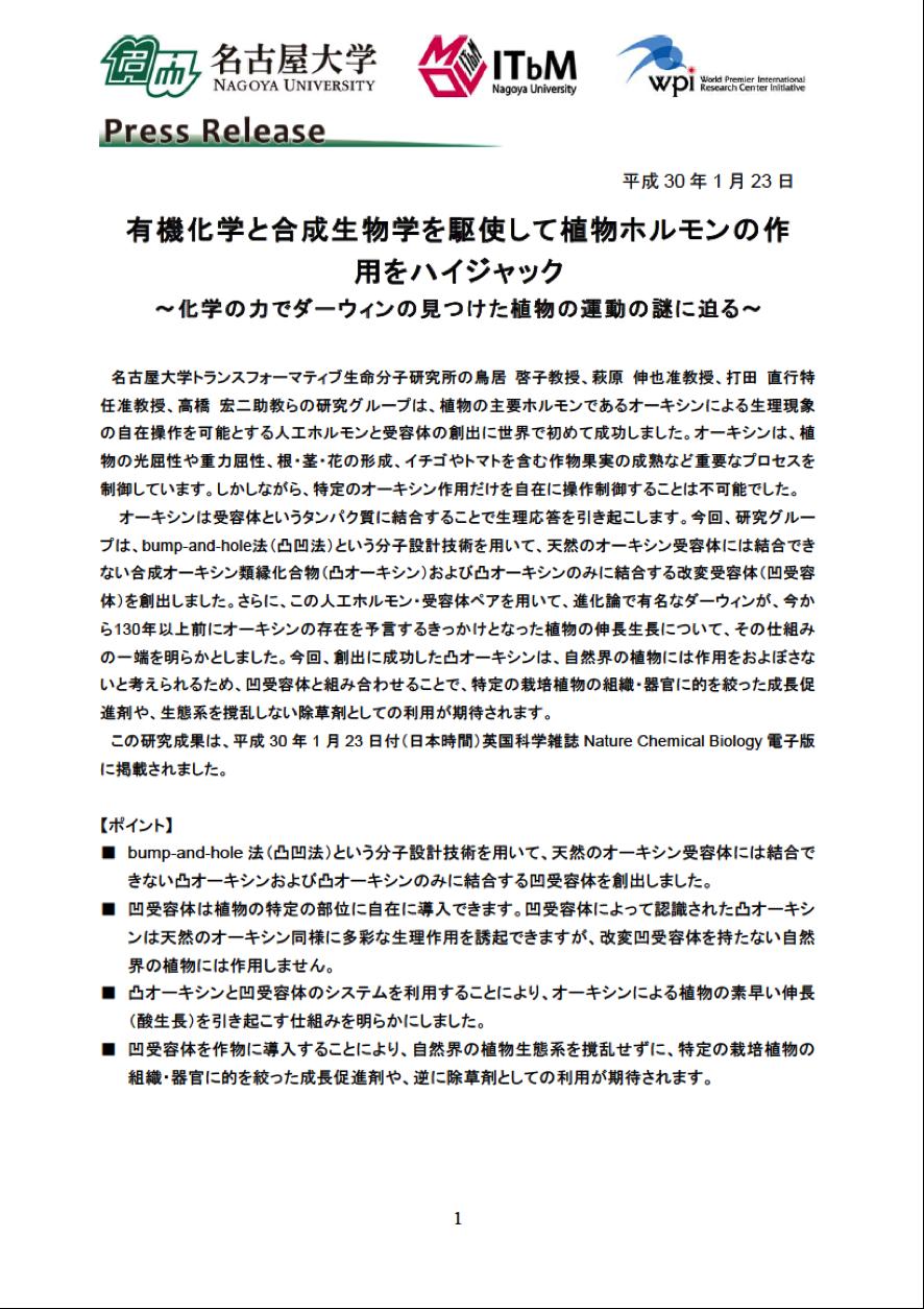 http://www.itbm.nagoya-u.ac.jp/ja/research/20180123_Torii_Auxin_JP_PressRelease_ITbM.png
