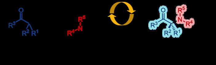 Aminocarbonyl_Figure1_JP.png