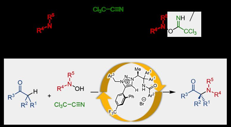 Aminocarbonyl_Figure3_JP.png