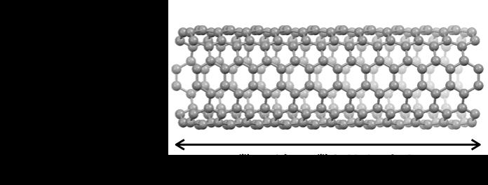 Fig.1_Nanobelt_JP.png