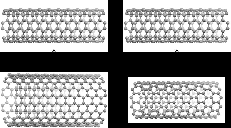 Fig.2_Nanobelt_JP.png