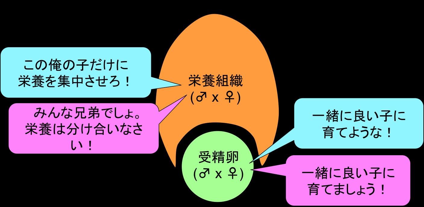 Fig5_GandD_JP.png