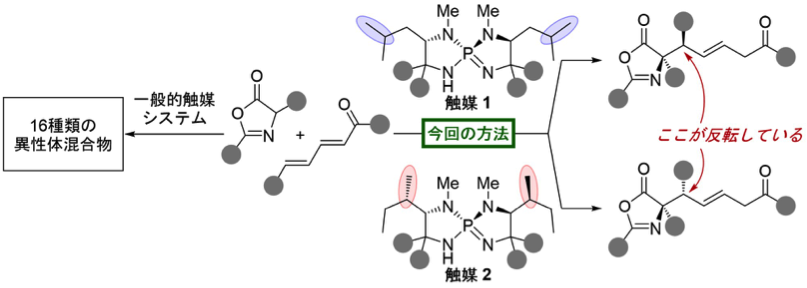 Figure1-1_NatComm_Cat_JP.png