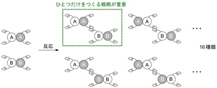 Figure3_NatComm_Cat_JP.jpg