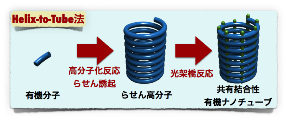 Figure3_ONT_JP.png