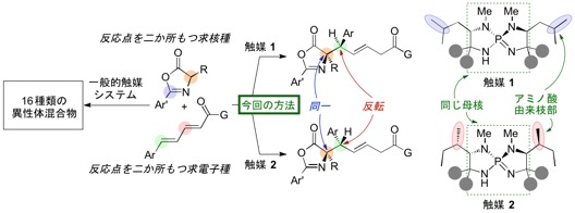 Figure4_NatComm_Cat_JP.jpg